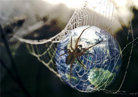 internet-world-wide-web-spider